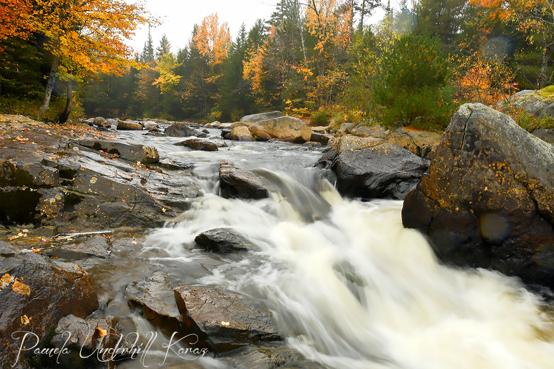 Black Creek Fall II