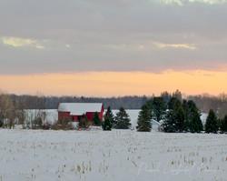 Red Barn Evening Light