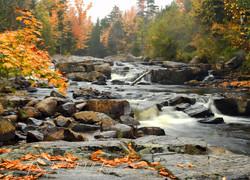 Back Creek Fall