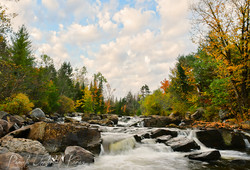 Black Creek Fall Day