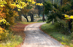 Partridge Hill Fall Day