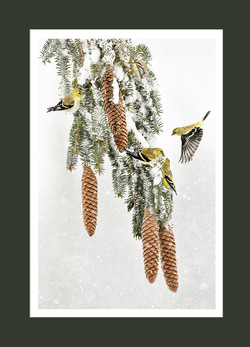 gold finch cones card