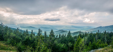 fromwhiteface1