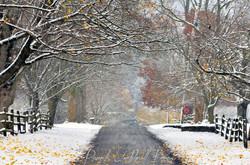 Partridge Hill Thanksgiving