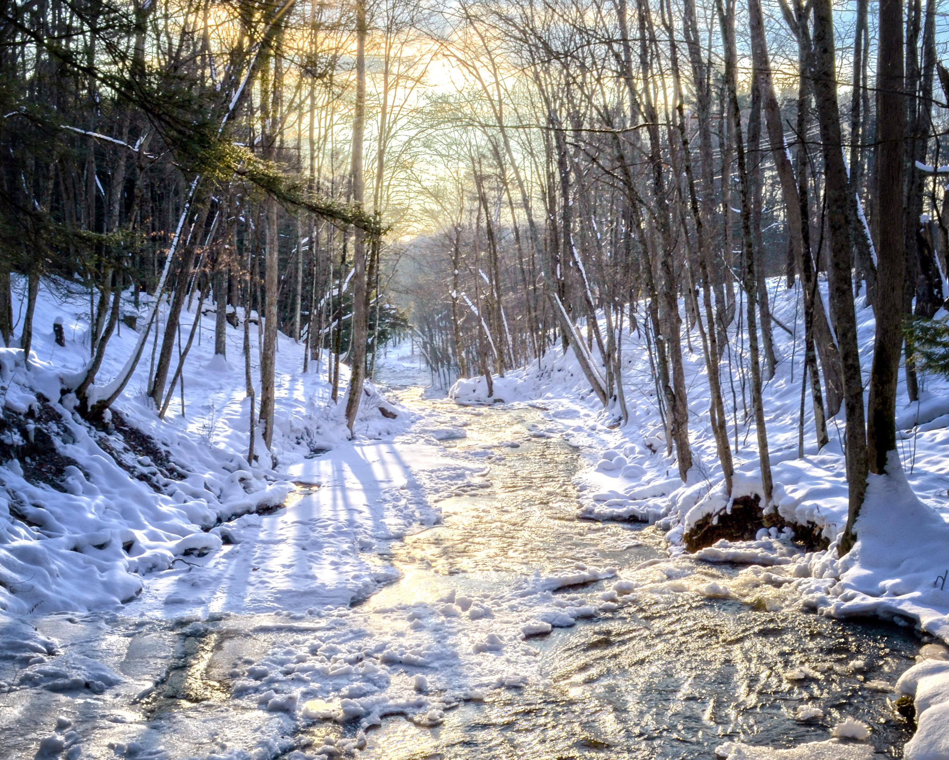 Mill Creek Winter