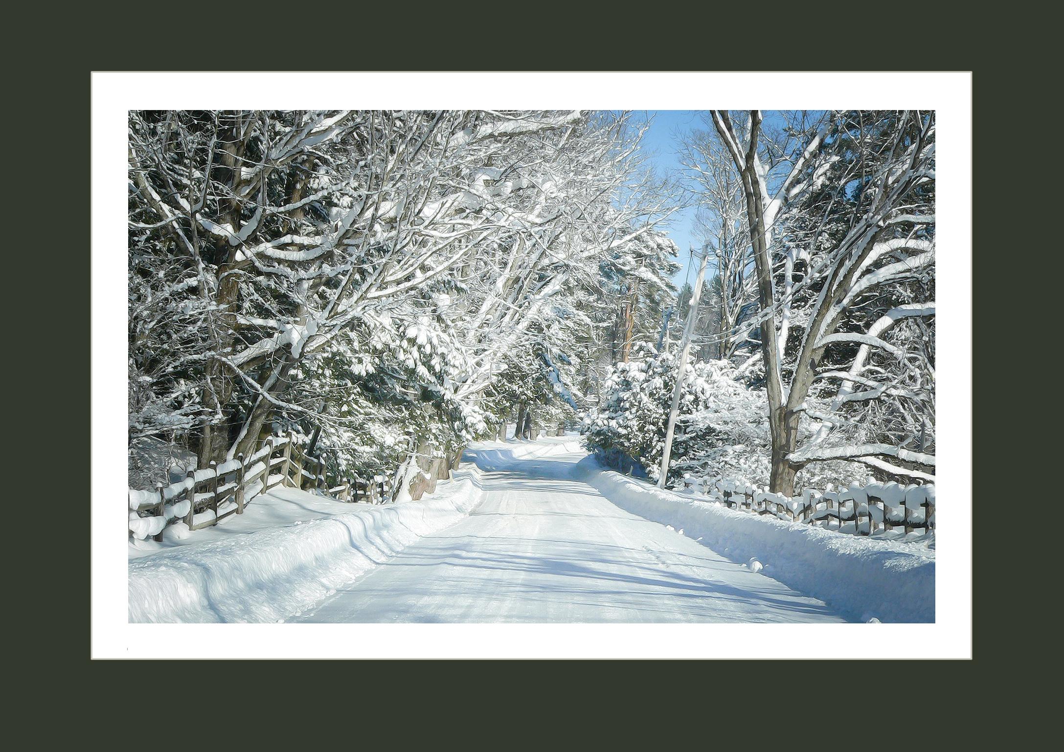 Partridge Hill Rd Winters Walk