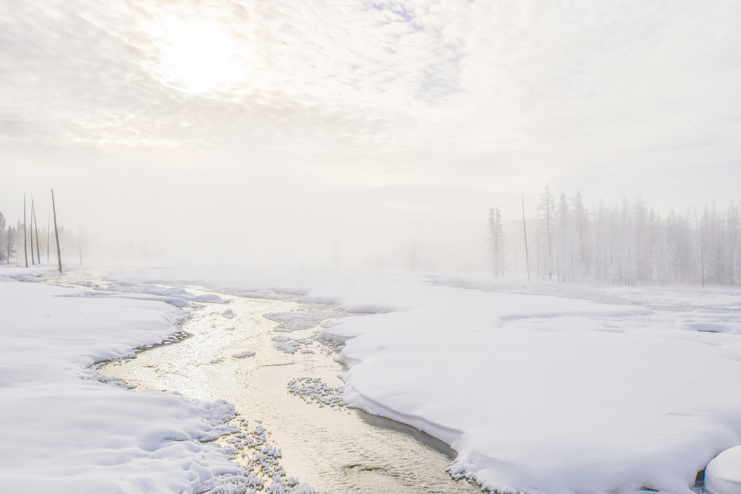 Morning Mist, Yellowstone