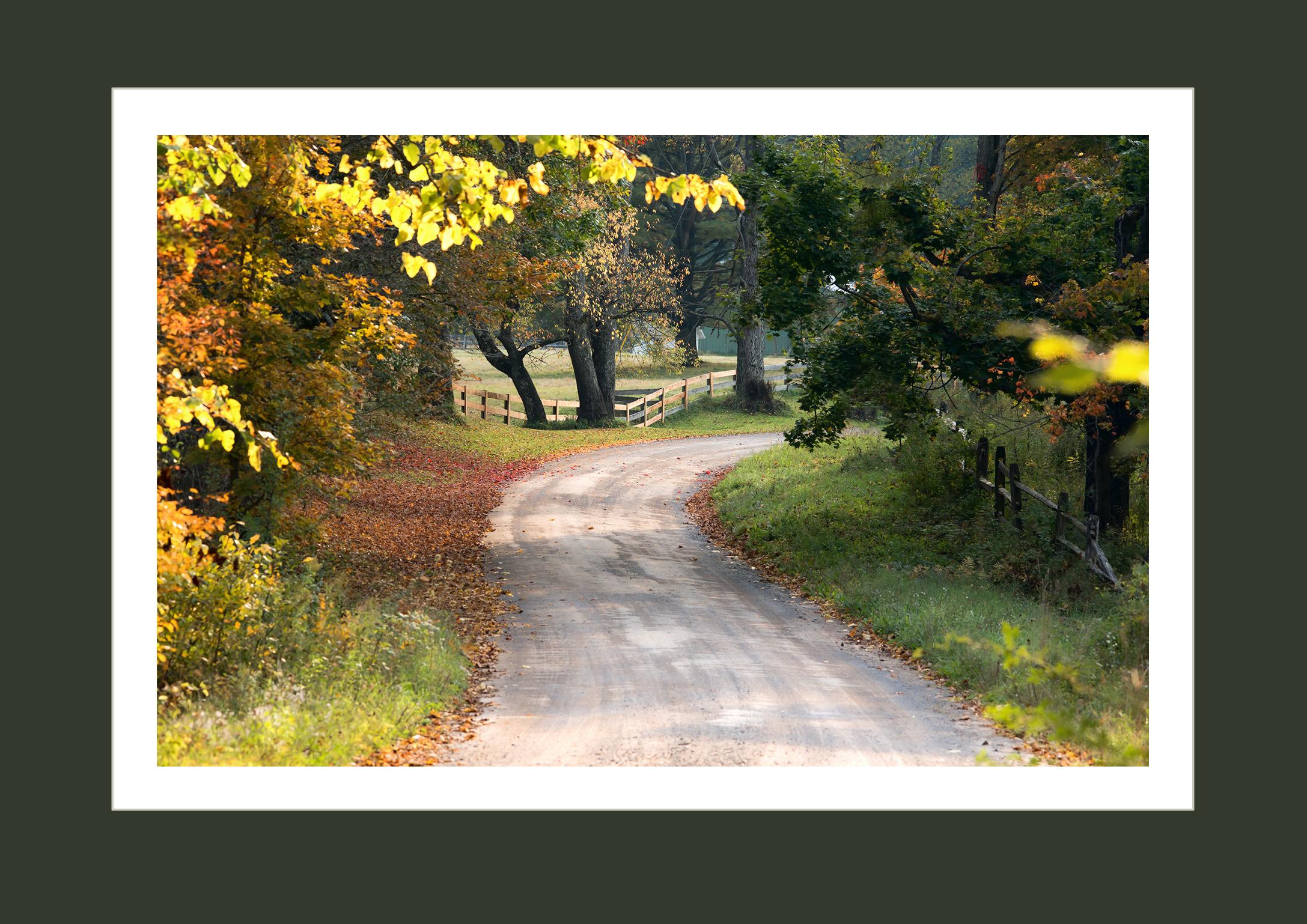 Sept along Partridge Hill Rd