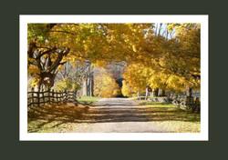 October along Partridge Hill