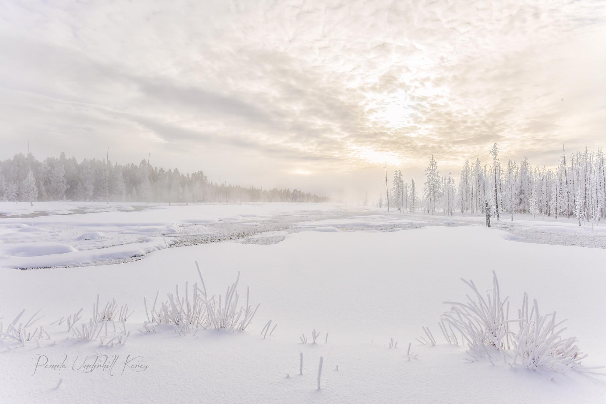 Morning Mist 5660