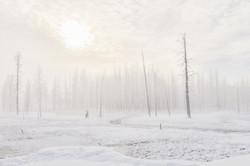 Morning Mist III, Yellowstone