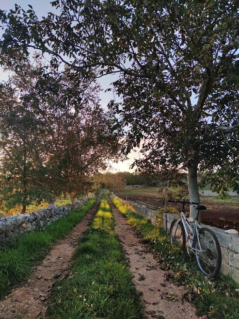 Autunno in Valle d'Itria, Puglia