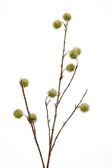 Oriental Plantaus Spray Faux Flowers Artificial Flowers