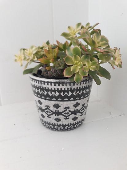 Black and White Ethnic Terracotta Indoor Pot