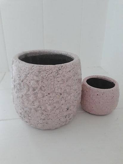 large petals pink indoor pot