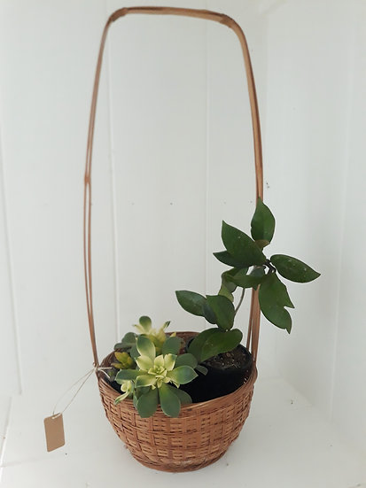Vintage Cane Basket with Tall Handle