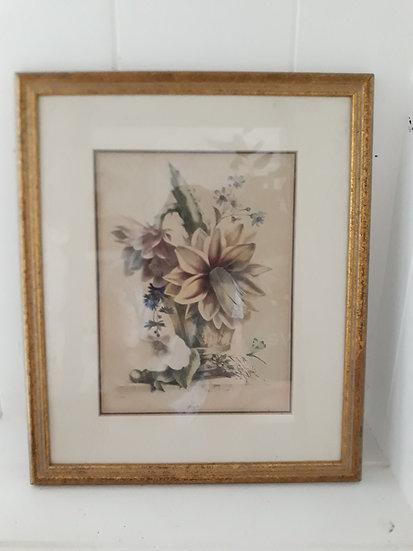 Vintage Botanical Cactus Framed Print