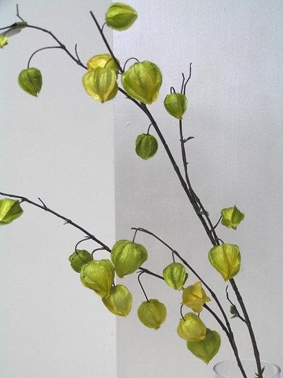 Chinese Lantern Green Artificial Foliage Flowers Faux Foliage