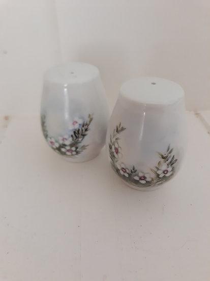 Handpainted Salt Pepper Set Ann Fraser