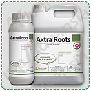 Axtra Roots-min.png