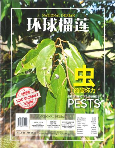 National Durian Magazine –  𝐈𝐬𝐬𝐮𝐞 𝟏𝟭/𝗙𝗲𝗯 𝟐𝟎𝟐𝟭