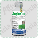 Angino-min.png