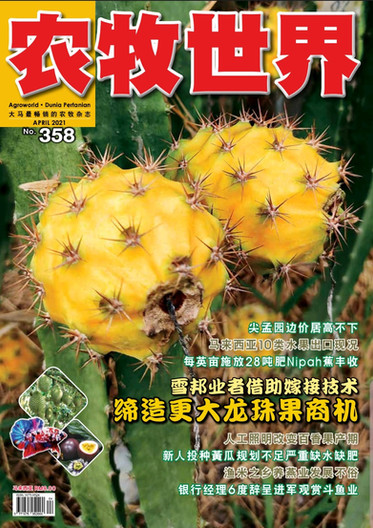 Agroworld April Issue 2021