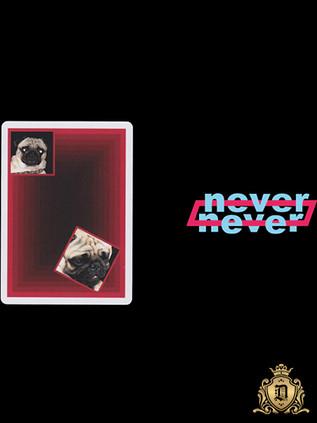 Double Never Playing Cards Markt 52 Deallez Pro Logistic Fulfillment Center Europe.jpg