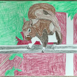 David Bremer - Squirrel