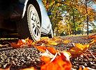 Auto auf Herbstlaub
