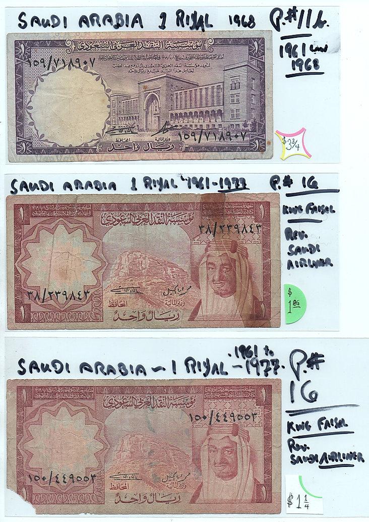Saudi11b.jpg