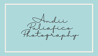Andii Logo.png