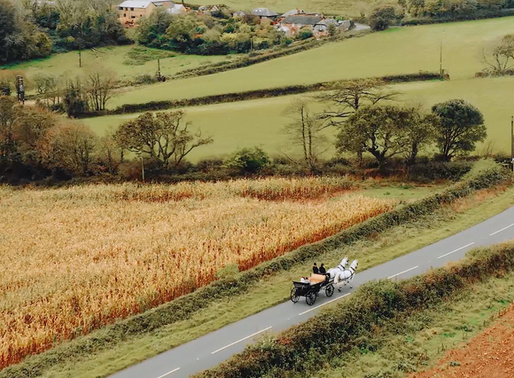 Horse + Carriage Elegance on the South Coast of Cornwall - Polhawn Fort Wedding Video