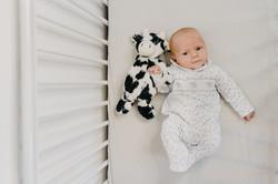 Newborn Photoshoot Portraits Tavistock