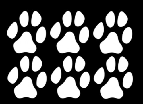 Set of 6 large paw print car decals each paw is approx 7 5cm x 7 5cm made of high quality outdoor vinyl 5 years with easy to follow application