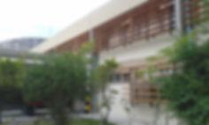lateral III.jpg