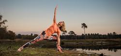 Yoga@Work - Eugenie Wortelboer