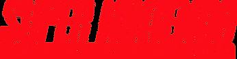 SNES_logo.svg.png
