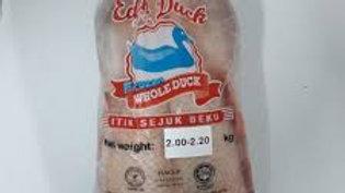 Malaysian Duck