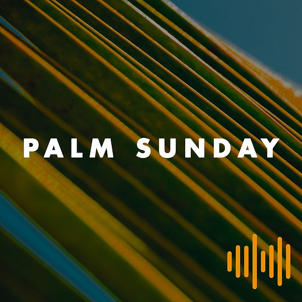 sonic palm sunday.jpg