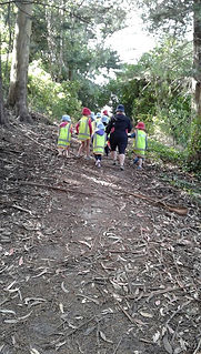 Out and about on a bush walk
