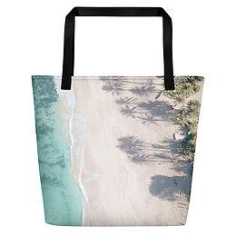 Beach Bag - North Shore aerial