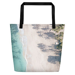 Beach Bag - North Shore aerial