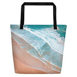 Beach Bag - Shoreline aerial