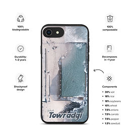Biodegradable iPhone case - Towradgi Pool