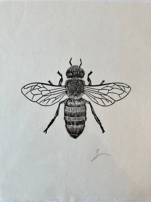 Graham Blair's Newfoundland Honeybee Woodcut Print 8x10