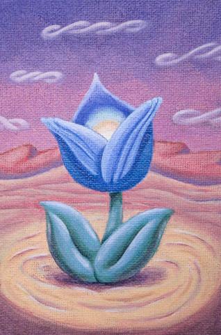 Blue Cupflower (Tulipa maleficas)