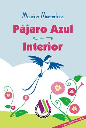 PÁJARO AZUL - INTERIOR