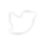 glyph-icons-twitter.png