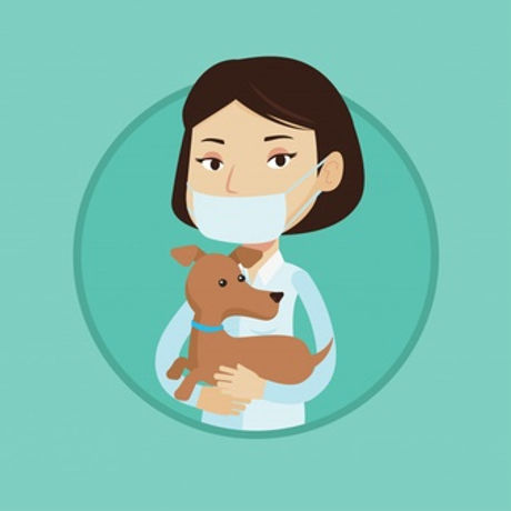 veterinaire-chien-dans-mains-vector-illu